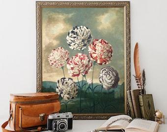 Vintage Botanical Print, Roses Print, Flower Botanical Print, Home Decor, Wall Art, Natural History Art, Floral Art Print Reproduction FP04