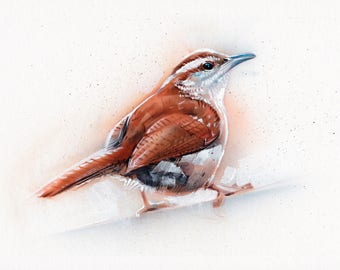 Carolina Wren Acrylic Painting Original Art