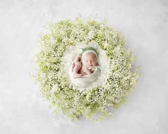 Newborn Photography Digital Backdrop for girls or boys - Simple white and green fresh foliage wreath