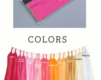 Tassel Garland Kit - DIY Tissue Tassel Garland Kit - Custom Colors - choose FOUR colors (EB3086)