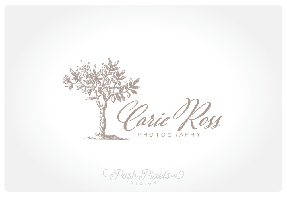 Logo Design Premade Tree Photography Business
