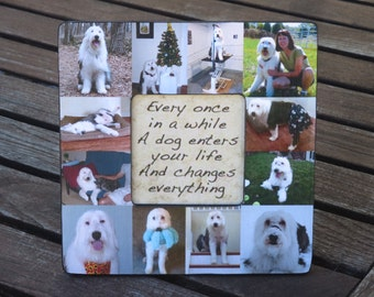 "Pet Memorial Frame, Personalized Pet Memorial Picture Frame, Custom Cat Frame, Pet Collage Picture Frame 8"" x 8"", Unique Gift"
