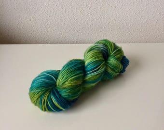 Hand dyed Merino single yarn