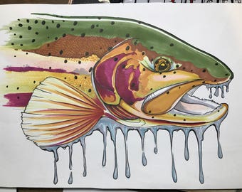 trout illustration