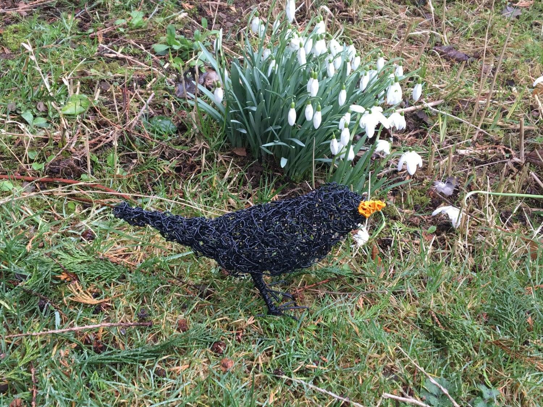 Amsel-Draht-Skulptur. Drahtkunst. Amsel. Vogel. Gartenkunst.