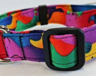 Rainbow Dog Collar by Doodlebug Duds