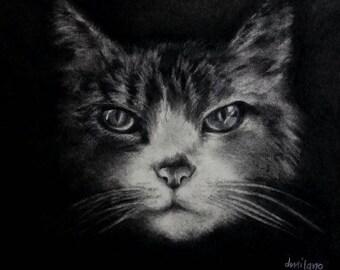 Art Pet Portrait Tabby #2
