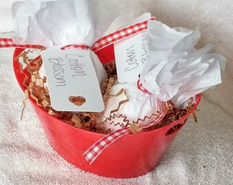 Cotton Blossom Gift Basket: 2pk