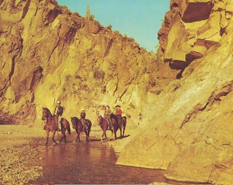 Vintage Postcard U.S. Arizona / Castle Creek / unused  / riders in Castle Creek, one-half mile from Castle Hot Springs Hotel