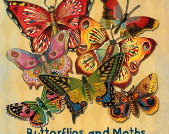 Butterflies and Moths PNG Files