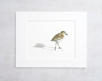 Sandpiper Print Beach Bird Watercolor Painting
