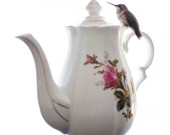 All the Tea for Me, Hummingbird Photo Print