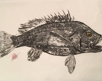 Black Sea Bass - Gyotaku Art - Original fish rubbing