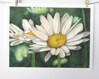 daisy art print, white daisies painting, watercolor flower art, white and green spring decor, giclée print