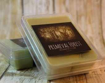 Book Wax Melt Clamshell / Fantasy Book Lover Gift / Primeval Forest /Talking Trees / Earthy Scent / Cardamom, Cedarwood, Rose, Loam, Leaves