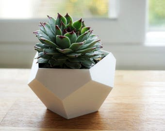 Geometric Planter, Succulent Planter, Faceted Planter, Modern PLanter, Minimalist Planter, Cactus Planter, Indoor Planter, Dodecahedron