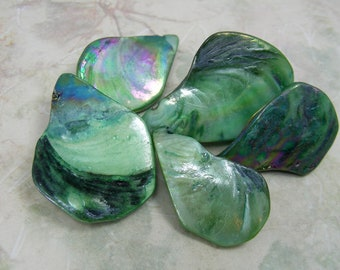 Mother of Pearl (Dyed/Coated) Green Iridescent 28x17mm-38x26mm Top-Drilled Flat Teardrop Beads