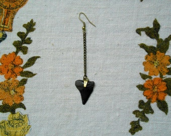 Small Fossilized Shark's Tooth Solo Earring