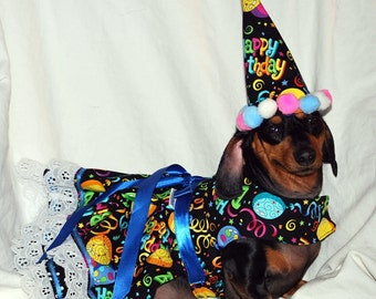 Birthday Party dress and Hat and Harness and hat set