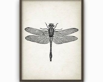 Libelle Wand Kunst Poster - Dragon Fly Home Decor - Giclee Insekt Kunstdruck (AB16)