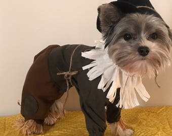 Custom made scarecrow costume for small dogs