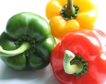 bell peppers in mix 1200 seeds,organic Red peppers seeds,non gmo ,greek traditional seeds 7.5gr Approx 1200 seeds