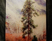 Canyon Pine - Large Glass Cutting Board -  12 in x 15 in