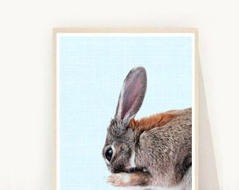Rabbit Printable, Nursery Wall Art, Rabbit Print, Modern Animal Print, Printable Art, Rabbit Wall art, Wall Decor, Instant download