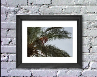 Digital, Instant Download, Palm Tree Photography, Palm Tree Print, Inspiration Poster, 8x10, LeBoer