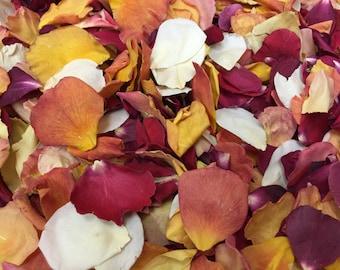 Autumn Wedding Petals. 50 cups. Rose Petals. Flower Petals. Wedding Confetti. Fall Decorations. Real Rose Petals. Freeze dried Petals. USA!