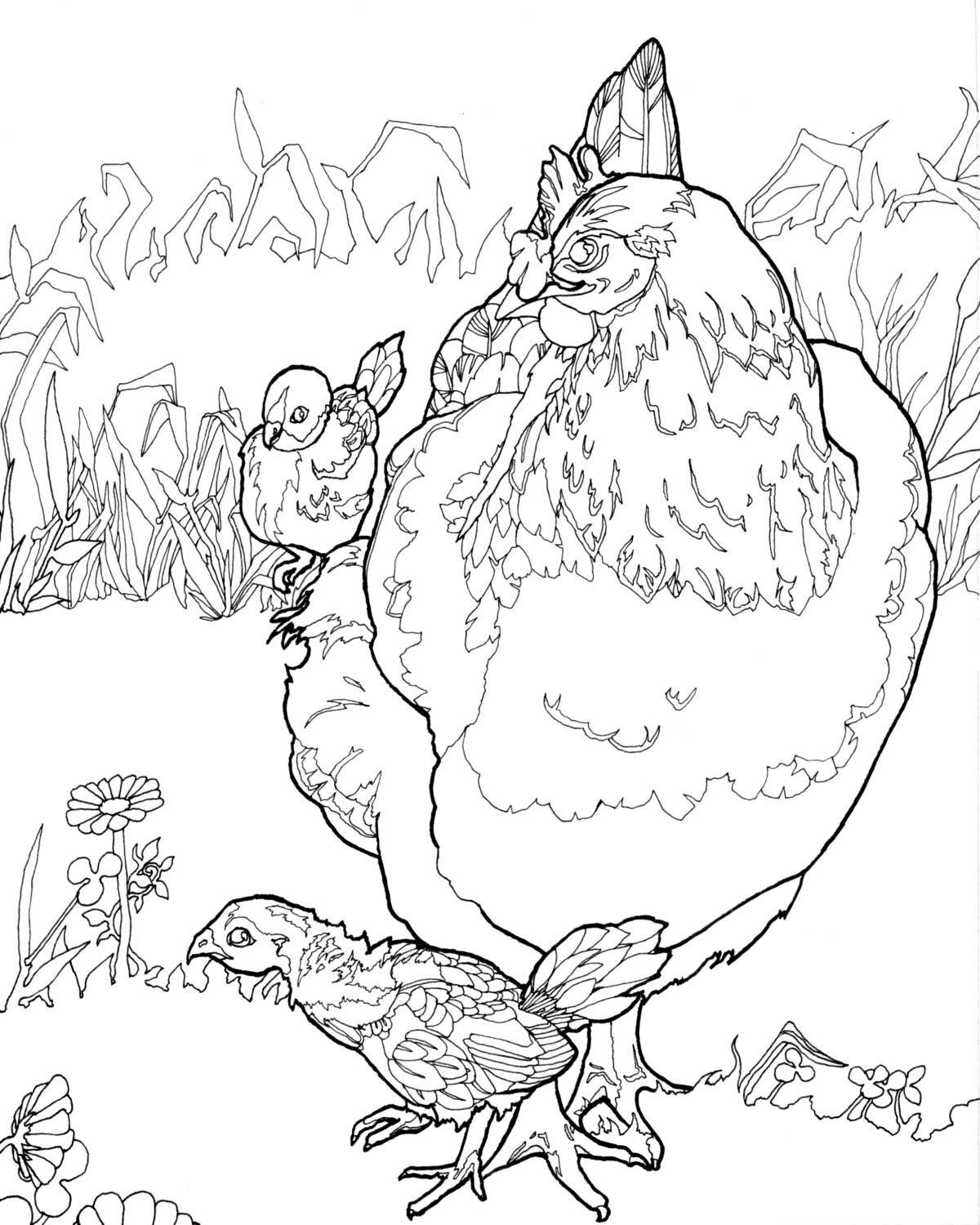 DIGITAL DOWNLOAD Chicken Coloring Pages Adult
