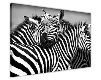 Black and White African Zebra Zamily on Framed Prints Canvas Wall Art Pictures Home Decoration Nature Landscape Photos