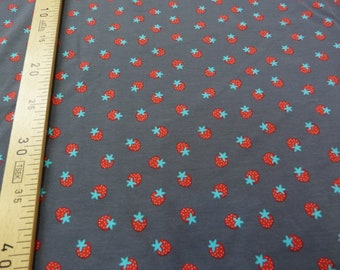 Grey Jersey Strawberry 150 cm, sold by the yard