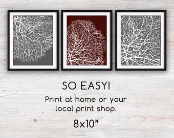 "Bathroom Coral Art Prints, Set of 3 8x10"" Printable"