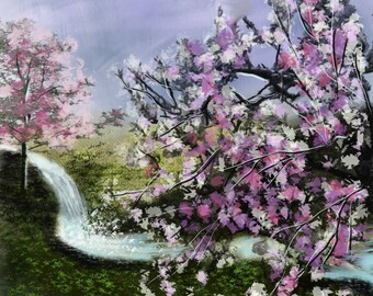 Cherry Trees Along The River