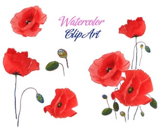 SALE Poppies clip art the poppy build poppy day remembrance day flower red flowers red veterans day fields watercolor