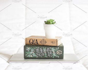 Styled Stock Photo | Succulent On Books On Laptop | Blog stock photo, stock image, stock photography, blog photography