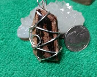 Wyoming Petrified wood Pendent. Shirley Basin Petrified Wood Pendent