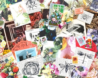 In the Garden Ephemera Pack/50+ Pieces/Mid Century Ephemera/Art Journaling/Junk Journaling/Mixed Media/Collage Art/Card Making