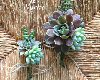 Succulent Boutonniere OR Succulent Corsage OR Wrist Corsage, Wedding Day Succulents, Wedding flowers, Groom Boutonniere,