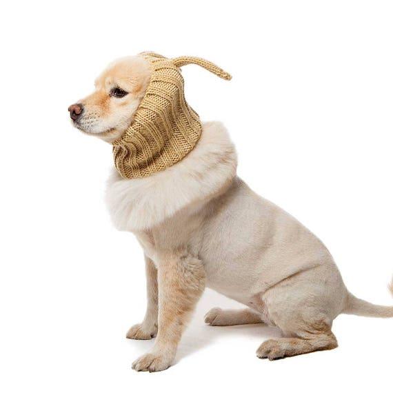 sc 1 st  Etsy & Jack Rabbit Dog Snood Knit Crochet Dog Hat Dog Costume