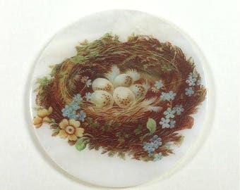 Mother of Pearl Button-The Feathered Nest