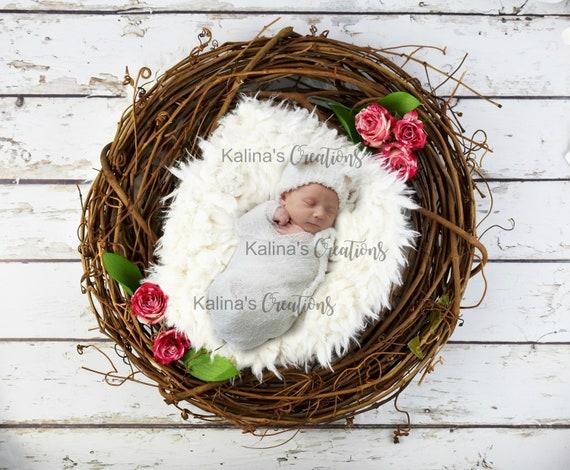 Newborn Photography / Newborn Photo