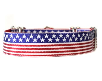 Wide 1 1/2 inch Adjustable Buckle or Martingale Dog Collar in All American Dog