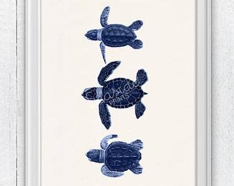 Little turtles in blue- sea life print- Seashore house Wall decor. Marine turtle  sea life illustration , Beach house SAS300