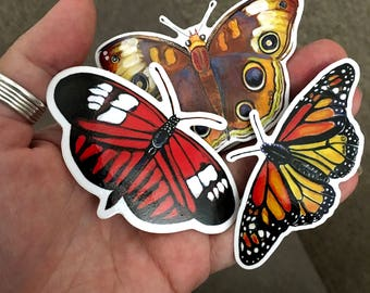 Watercolor Butterfly Art Sticker 3 Pack by Surly Amy Davis Roth