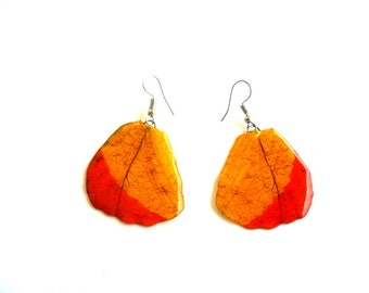 Real Butterfly Wings Earrings Handmade Unsual Jewelry Gift  / Natural Jewelry Earring