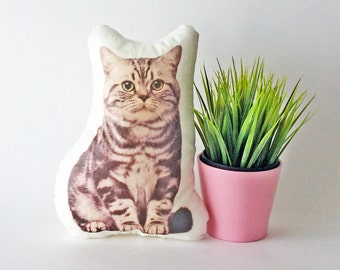 Cat pillow, cat decor, animal pillow, cat lovers, decorative pillows, stuffed animal, cat gifts, pet lovers, accent pillows, cat cushion