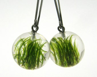 Moss Black Round Earrings, Green Moss Earrings with Oxidized Silver, Forest Jewelry with Natural Moss Embedded in Clear Resin