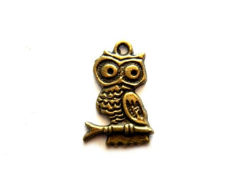 10 Bronze Owl Charms